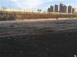 五大街公交站东垃圾清理